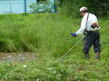 刈り払い機による草刈.JPG