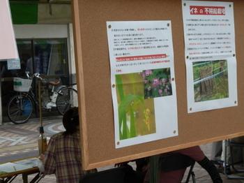 環境フェスタ2.JPG